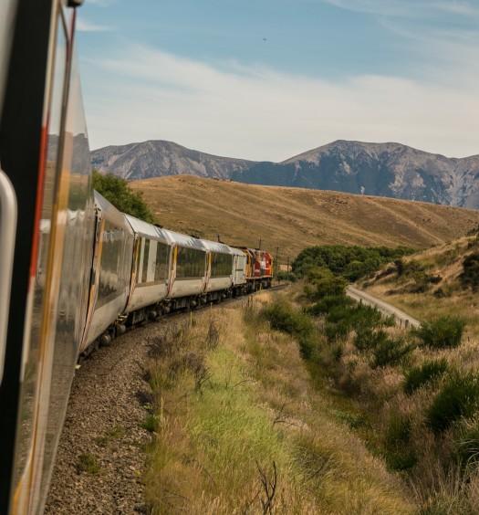 tren purisima